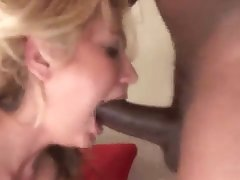BBC bulls nailing your wife compilation trainer